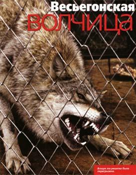 Логово волчицы фильм